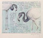 Post aus dem Zoo von Bristol 1