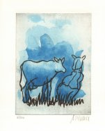 Blaue Kuh auf der Weide